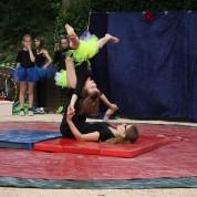 Zonnig optreden van Circus op de Utrechtse Heuvelrug